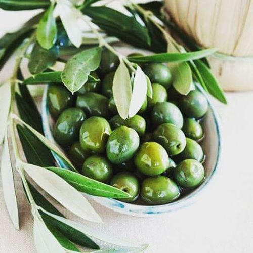 زيتون زيتون_اخضر Green_olives Olivegarden Olives