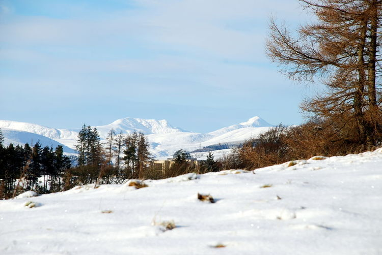 Ben Vorlich Ben Vorlich Perthshire, Scotland Beauty In Nature Cold Temperature Day Landscape Mountain Nature No People Outdoors Scenics Sky Snow Tranquil Scene Tranquility Tree Weather White Color Winter