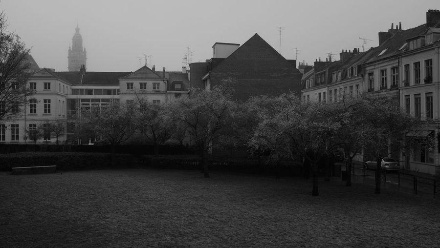 Blackandwhite City Europe France Lille No People Noir Et Blanc Old Road Rue Vieux