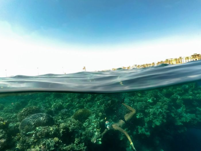 On the coral bay! Submerged Divingphotography Diving Dome Swim Igers Swag Sealife Colorful Colors Amazing Travel Gopro Like EyeEm Best Shots EyeEm Selects Enjoying Life Egypt Sea And Sky UnderSea Water Cityscape Sea Beach Wave Blue Underwater Seascape Coast Sailing Boat Go Higher