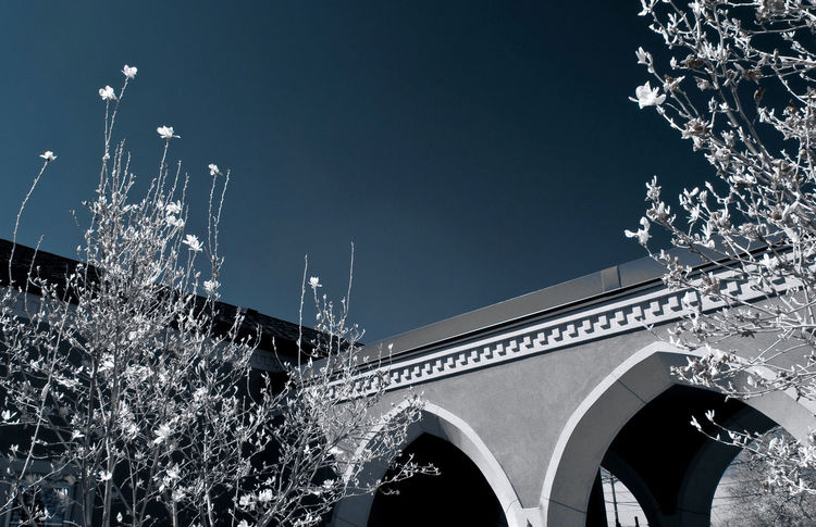 Architecture Building Exterior Built Structure Infrared Infrared Photo Infrared Photography Low Angle View Nature Night No People Outdoors Sky Triumphal Arch