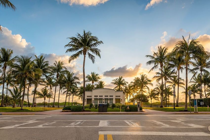 Palm Tree Tree Building Exterior Sky Cloud - Sky Outdoors No People Architecture Day USA Miami Beach Florida Sand Beauty In Nature Sunrise