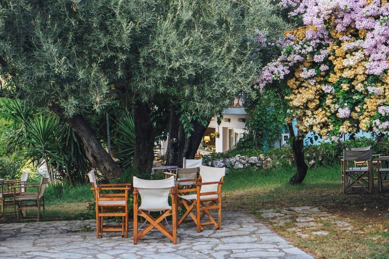 Empty chairs and table by trees against building