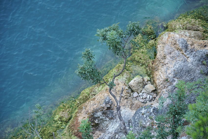 Mountain Road Water Rock Rock - Object Solid Sea Plant Nature Beauty In Nature No People Day Tree Tranquility Scenics - Nature Tranquil Scene High Angle View Land Outdoors Cliff Rock Formation Turquoise Colored Lakeside Shore Shoreline