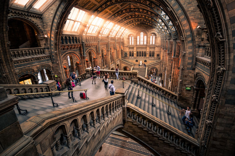 Natural History Museum, London Arch Architectural Column Architectural Feature Architecture Art Built Structure Handtrail Interior Landmark,travel Light London Museum Natural History Museum Staircase Stairs The Architect - 2016 EyeEm Awards Travel Destinations United Kingdom Market Reviewers' Top Picks