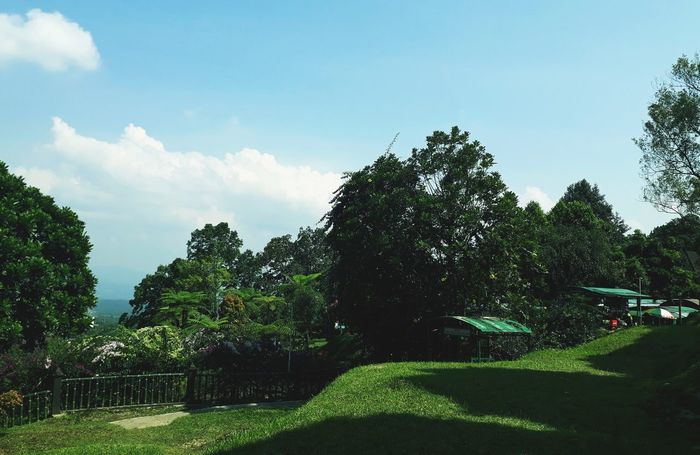 Scenery Baturaden Forest Baturaden Beauty In Nature Nature Outdoor City Scenery Jawa Tengah, Indonesia Jawatengah Green Color Green Leaves Tree Spraying Sky Cloud - Sky Green Color Irrigation Equipment Agricultural Equipment