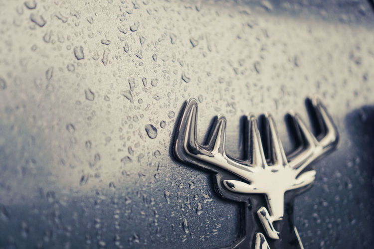 Close-up of water drops on car windshield
