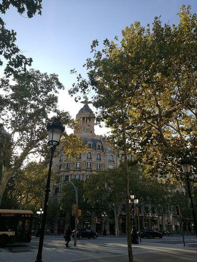 Barcelona, Spain Barcelona España On Sale My Best Photo City Tree Sky Architecture Historic Civilization Park - Man Made Space Visiting