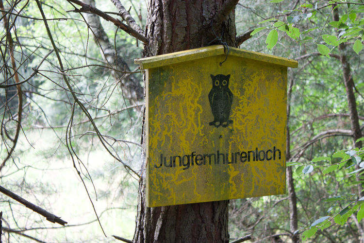 Tree Schöne Ortschaften