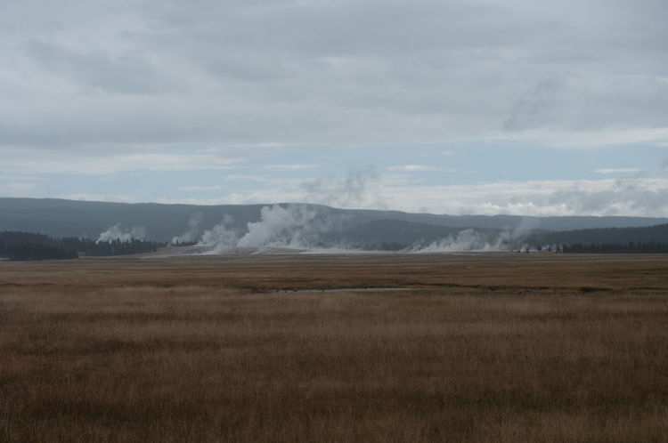 "To view more pictures like this by me, add ""Morgan Fleming"" to the search bar above. Calm Cloud Cloudy Sky Day Field Field Geyser Grass Grey Landscape Nature No People Remote Sad Sadness Scenics Steam Subdued Yellowstone National Park"