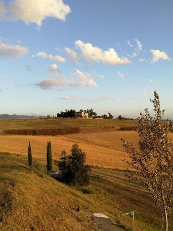 Tuscany Tuscany Countryside Warmlight Been There. Lost In The Landscape Perspectives On Nature Summer Exploratorium Summer Road Tripping