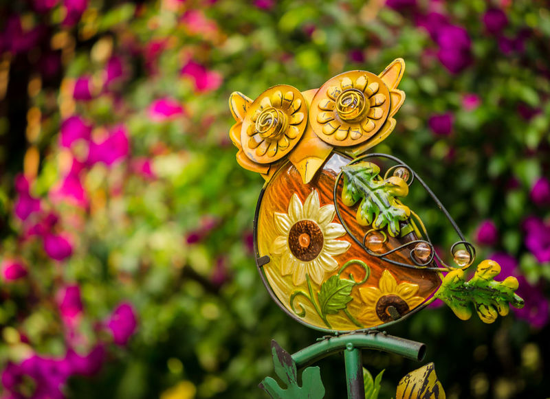 Beauty In Nature Butterfly - Insect Close-up Day Flower Focus On Foreground Fragility Garden Garden Photography Green Color Growth Macro Metal Sculpture Multi Colored Nature No People Ornaments Outdoors Owl Owl Art Petal Plant Selective Focus Yellow
