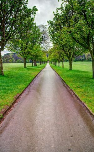 Walking the path at Wollaton Hall in the rain!