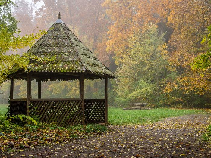 Tree Grass Architecture Sky Built Structure Gazebo Pavilion Wooden Shelter Structure