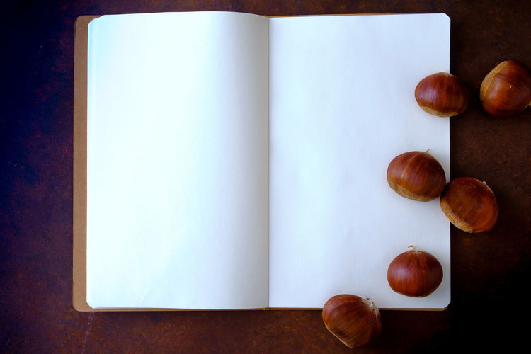 Chestnuts on the table with copy space Chestnuts Copy Space Menu Agenda Apple - Fruit Blank Close-up Copy Space Directly Above Food Food And Drink Freshness Fruit Group Of Objects Healthy Eating High Angle View Indoors  No People Notebook Nut Snack Still Life Studio Shot Table Wellbeing