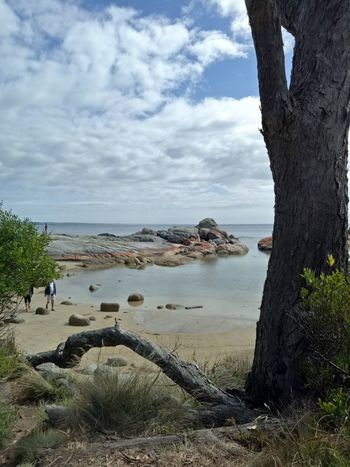 Beauty In Nature Tranquility Outdoors Sea Water Sky Beach Nature Tasmania Landscape Summer
