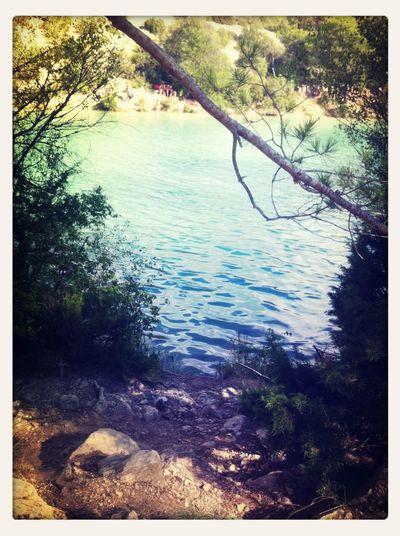 Nature Lake Summer Having Fun