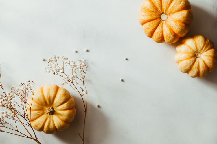 Autumn Top View Flat Lay September October November Pumpkin Note Empty Blank White Above Vegetable Copy Concept Cozy Winter Mockup Fall Space Background Harvest Mock Desk Table Design Pencil Template Colorful Fall