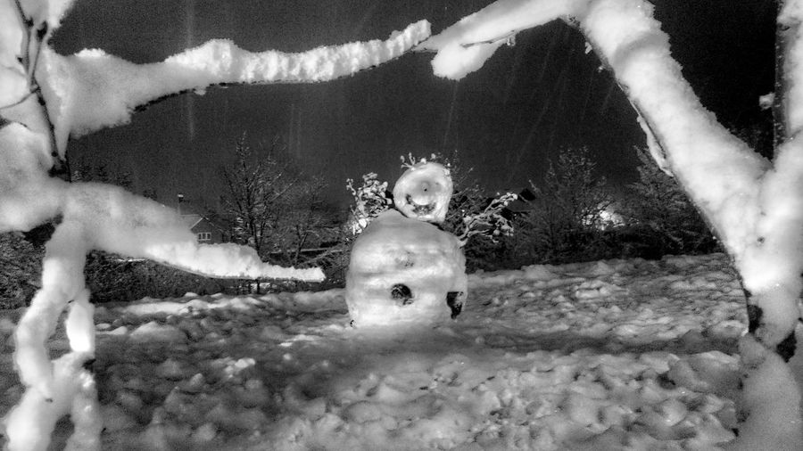 Snow......Man ⛄ Popular Photos Evil Snowman Maniac Psycho Psycho Snowman ⛄ Nightphotography Night Snow Snowman Fear The Snowman Freeky Snowman AndroidPhotography Android Hello Darkness My Old Friend Tadaa Community For Friends That Connect  Darkness Frame Fragility Winter Wintertime No People Nature Mammal