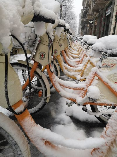 Close-up of snow covered bicycle during winter