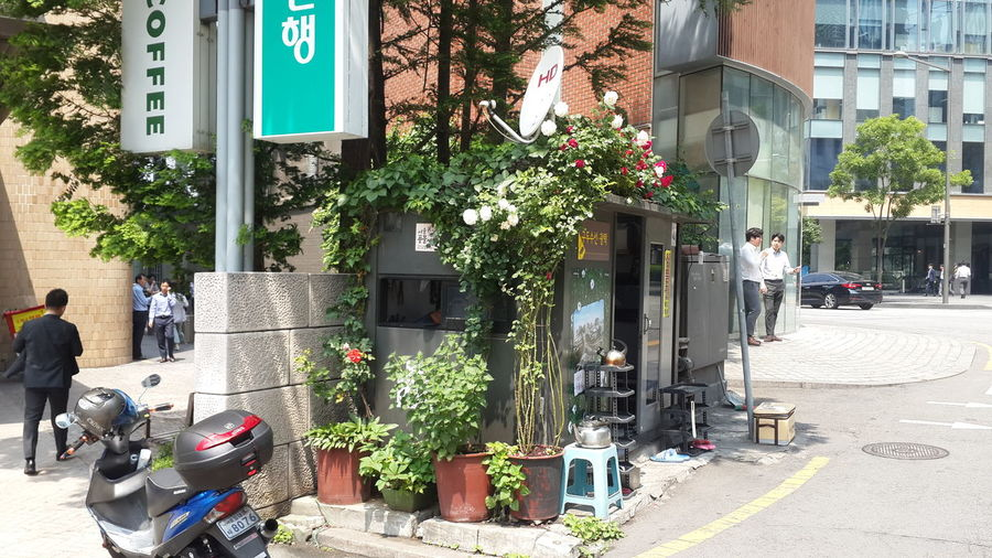 Resonance Three-gaze-real Lust For Life Asian Street Photo East Pacific Secret Service Telling Asia Fantasmakorea Jongno, Seoul