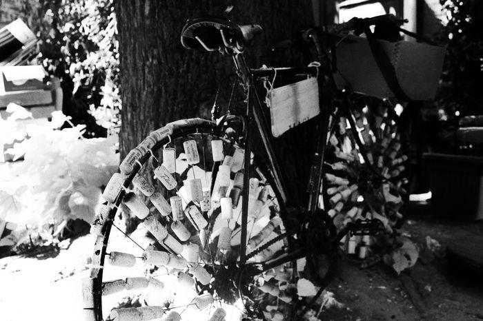 Blackandwhite Bike Viterbo Hello World Enjoying Life Canonphotography Like4like Italy Italy Holidays Eyemmarket CanonD600  Lazio,Italy Eyemphotography Colour Of Life Eyem Best Shots Eyem Gallery Cork Corks Strange Art Lovely Tuscia  Tusciafotografia Italyiloveyou Italygram
