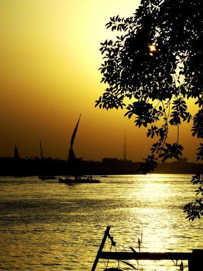 My Year My View Nile First Eyeem Photo