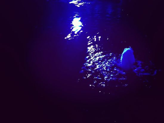 散歩で夜の噴水 噴水