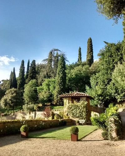 A Piraty Wedding in the Green Careggi fontanelle villa hills Firenze Florence ig_toscana igerstoscana visittuscany tuscanybuzz Tuscany vivo_toscana vivo_italia volgoarttoscana