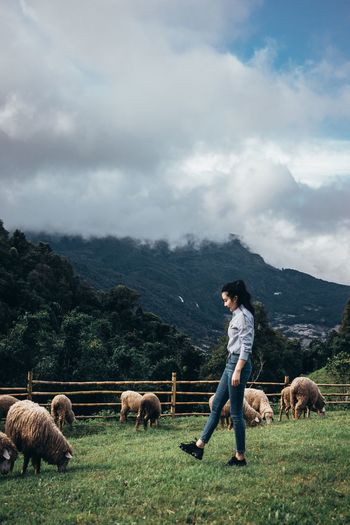 Full Length Of Young Woman With Sheep On Field Against Sky