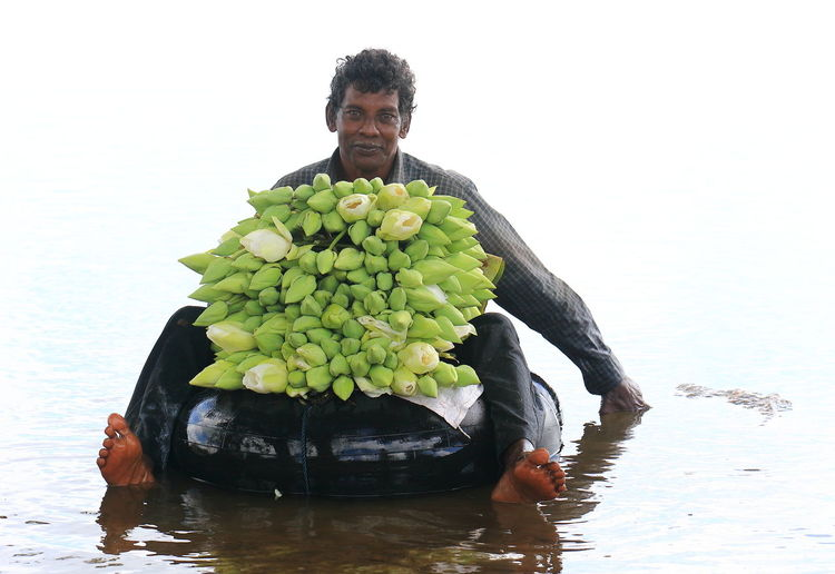 portrait of a lotus picker in Tissamaharama, Sri Lanka Casual Clothing Fragility Freshness Leisure Activity Lifestyles Lotus Flower Lotus Picker Lotus Water Lily Portrait Sri Lanka Tissamaharama Waterfront Young Adult People And Places People And Places. An Eye For Travel