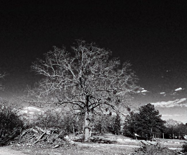 Darkness And Light Stormbringerphoto PixlrExpress HDR Black And White IPhoneography Iphone5s Iphoneonly Greenwood Cemetary Hotsprings Exploring Light And Shadow