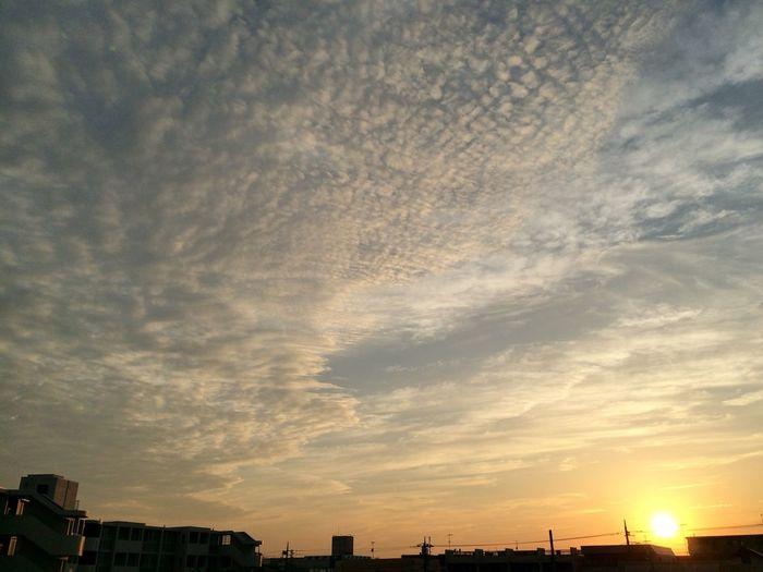 ソラ 自然 夕焼け Nature Sunset 雲 Clouds
