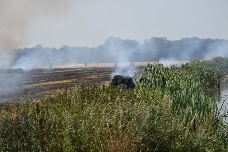 Smoke emitting from field against sky