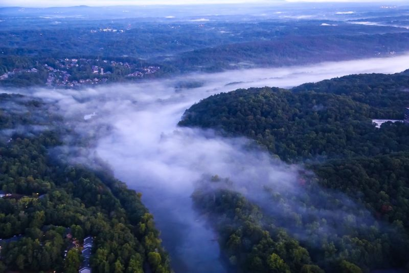 Morning river fog Beauty In Nature Scenics - Nature Tranquil Scene Tree Nature High Angle View Environment Tranquility Landscape Non-urban Scene Water Aerial View Idyllic Day Outdoors No People