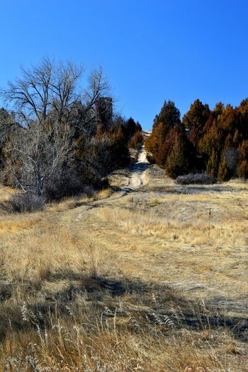 Trail road up to top Rural Winter Warm Temperature Road Day Outdoors Sun Outside Of Town Shadow
