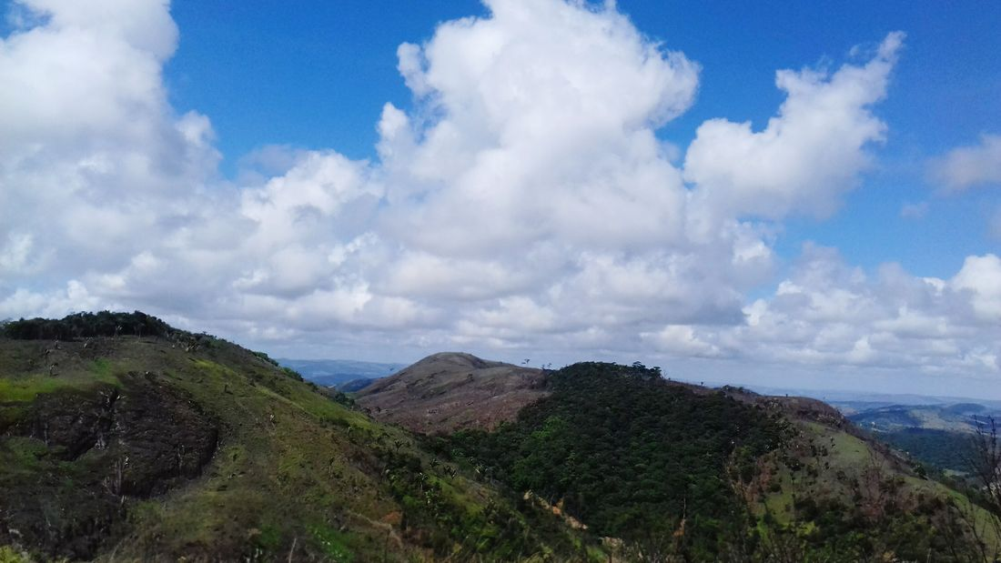 Cloud - Sky Growth Sky Nature Landscape Scenics Agriculture Beauty In Nature Travel Destinations Outdoors Vacations Day Tea Crop No People Mountain Lush - Description Freshness Brazil