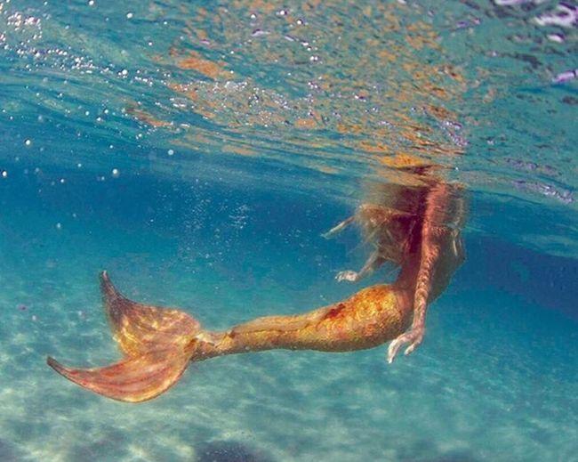 Mermaid We Are One_we Are Girls Mermaid Sexygirl