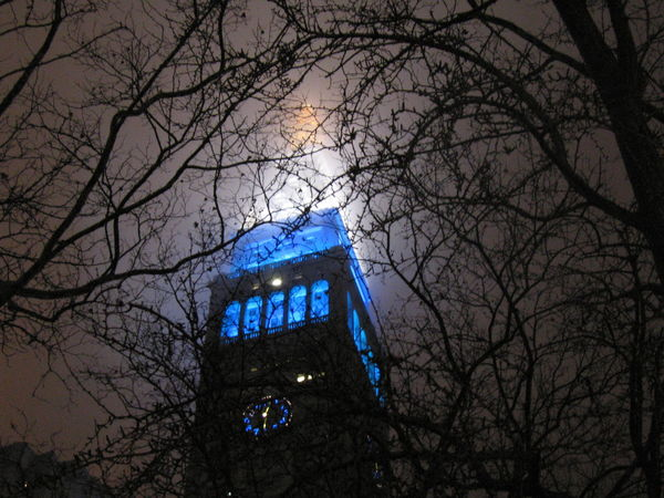 Foggy Night Manhattan Architecture Building Exterior Built Structure Illuminated Night Night Shots  No People Outdoors Spooky Tree