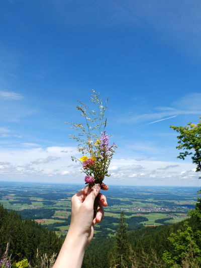 Woman Holding Flowers On Mountain Against Sky