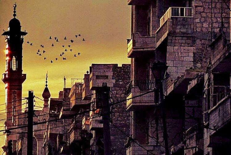 Mosque War Sunset Birds in syira Syira