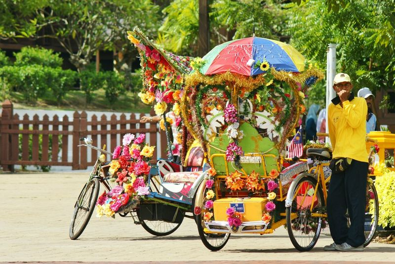 Strongman with a flowers tricycle Tricycle Tricycle Driver Flowers Colorfull Flower Malacca,malaysia Holiday Transportation Bicycle Mode Of Transport Outdoors Tree Riding Adult One Man Only Day Men People One Person