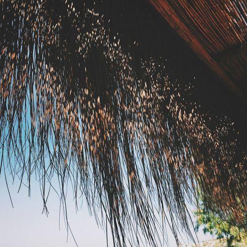 Bodrum VSCO Sunshine Getting A Tan Beach Taking Photos Enjoying The Sun Relaxing