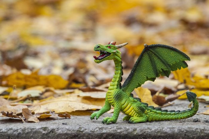 Once upon a time..... Dragon Toy Playtime Leaf Outdoors Green Color Autumn Day No People Close-up Nature