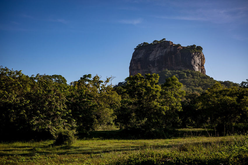 Beauty In Nature Dambulla Day Landscape Lion Nature No People Outdoors Pidurangala Rock Rock - Object Rock Formation Scenics Sky SriLanka Sunrise Tranquility Travel Destinations