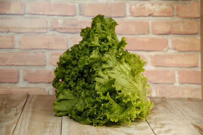 alface lettuce Wall - Building Feature Alface Crespa Alface Wall Day Frozen Leaf Focus On Foreground Indoors  Brick Wall Still Life Brick Wood - Material Vegetable Wellbeing Healthy Eating Table No People Close-up Green Color Freshness Food Food And Drink Lettuce