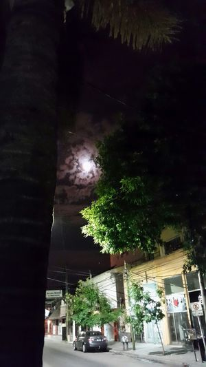 Night Illuminated No People Sky City Moonlight Noche Loca Crazy Moments Primavera One Palmeras🌴