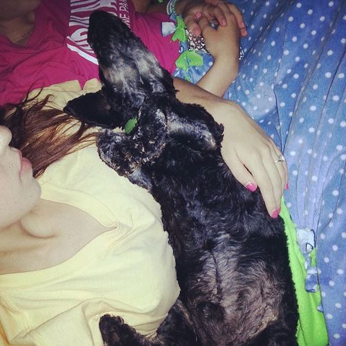 The Doobs, AKA The cuddle master. Ultimatecuddler