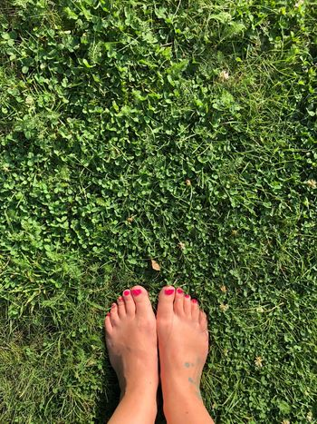 Feet on grass EyeEm Selects Low Section Human Body Part Human Leg Body Part One Person Grass Real People Green Color Women Human Foot Nail Polish High Angle View Standing