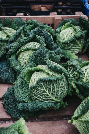 Fresh cabbage on sale at a street market. London Market Food Market Food And Drink No People Food Freshness Retail  Market Stall Green Color Close-up Still Life Green Healthy Eating Wellbeing For Sale Vegetable Cabbage Day Large Group Of Objects High Angle View Local Food Organic Produce Groceries